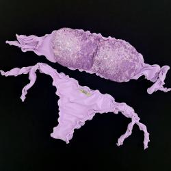 Bandeau Bikini Paillettes Lilac Brazilian Bottom