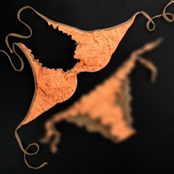 Wired Bra Cup C D Lace Fluo Orange